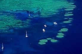 luxury yacht charter whitsundays bait reef from air